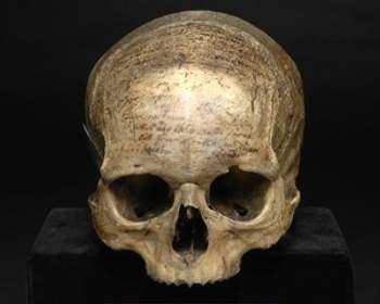 Cráneo de Descartes